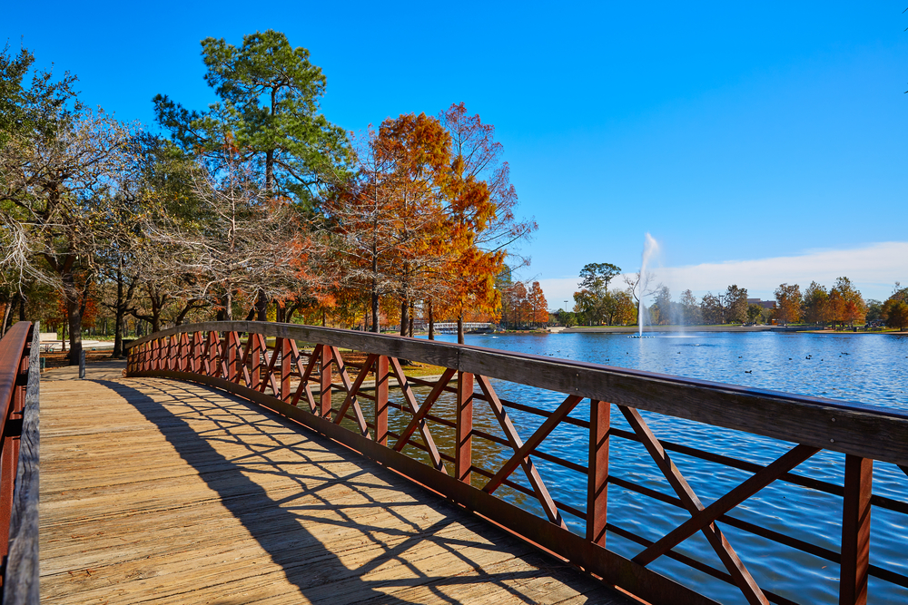 A nice wooden bridge on a sunny day with fall colors all around