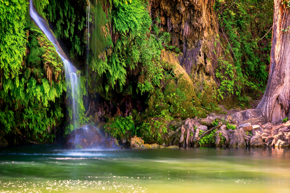 Waterfall running into Krause Springs, surrounded by trees.