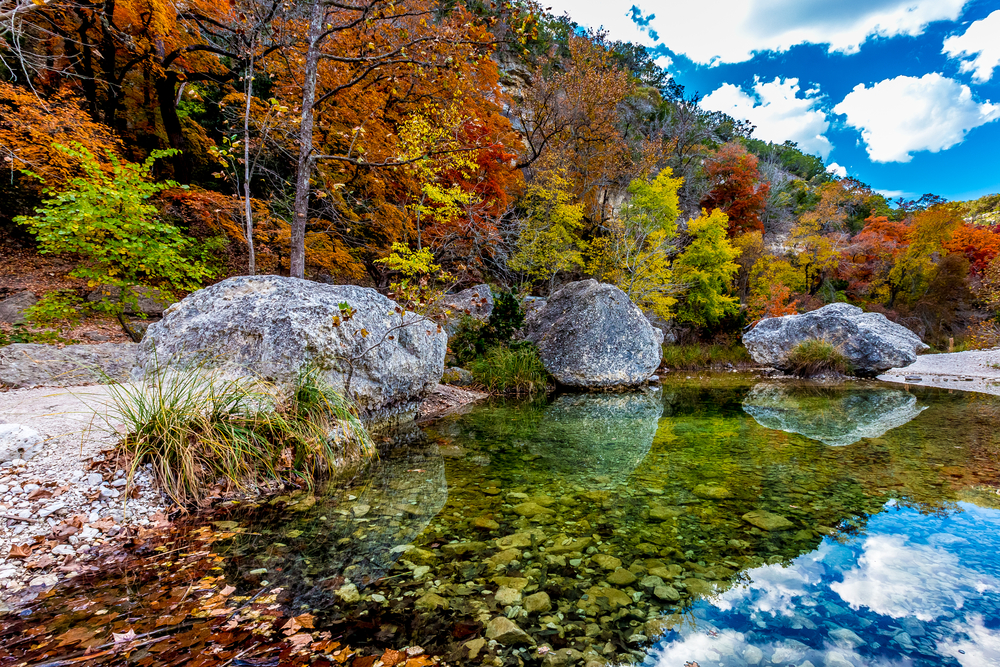 Fall colors at Lost Maples State Park on a sunny day with a river and 3 large boulders in the foreground