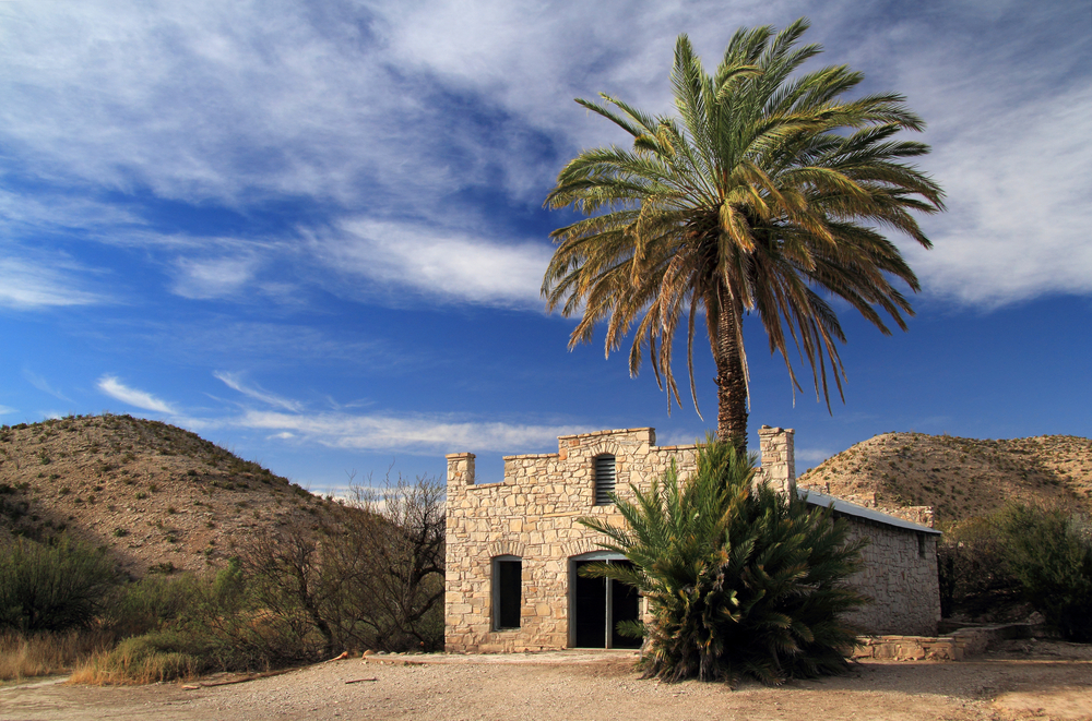 stone structure with palm tree in a desert landscape
