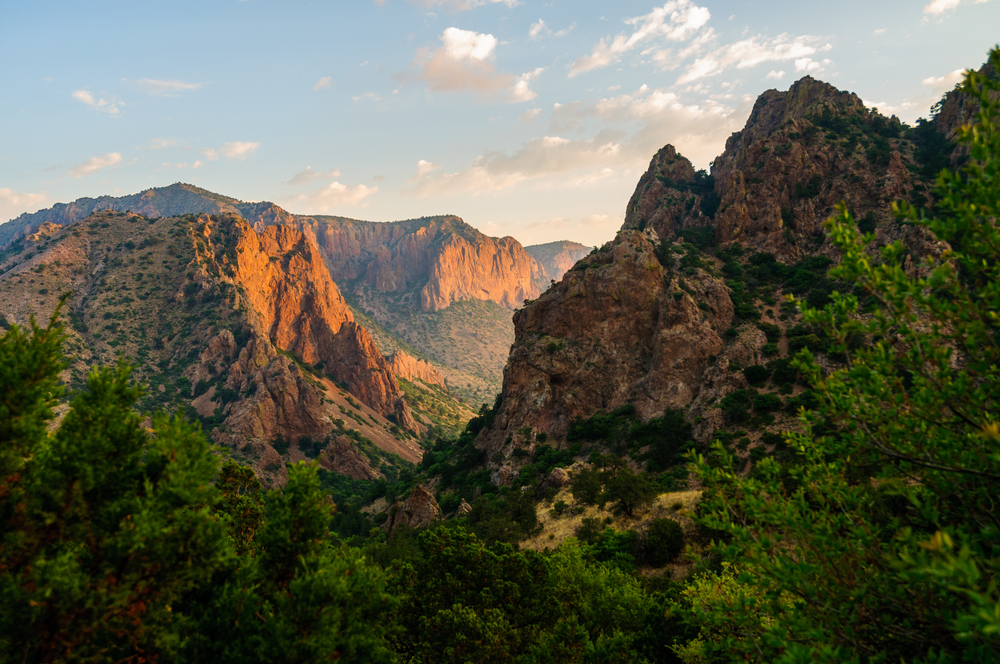gorgeous view of mountains and green foliage at Big Bend National Park, Texas at sunset