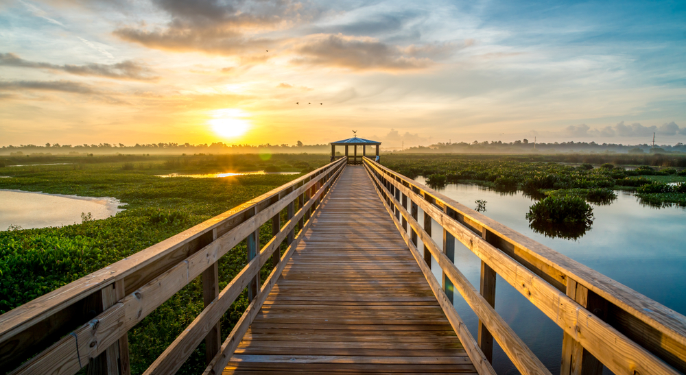 Wooden boardwalk over wetlands in Beaumont at sunset one of the best places to see in East Texas.