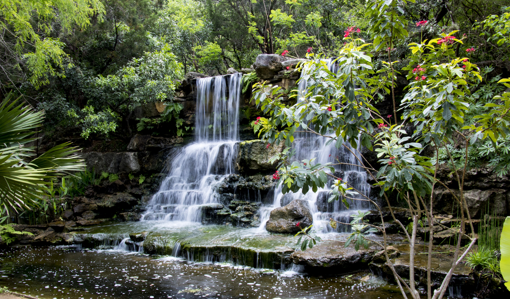 one of the most beautiful things to do in Texas Hill Country. Cascading waterfalls flowing into a stream with a flowering tree nearby