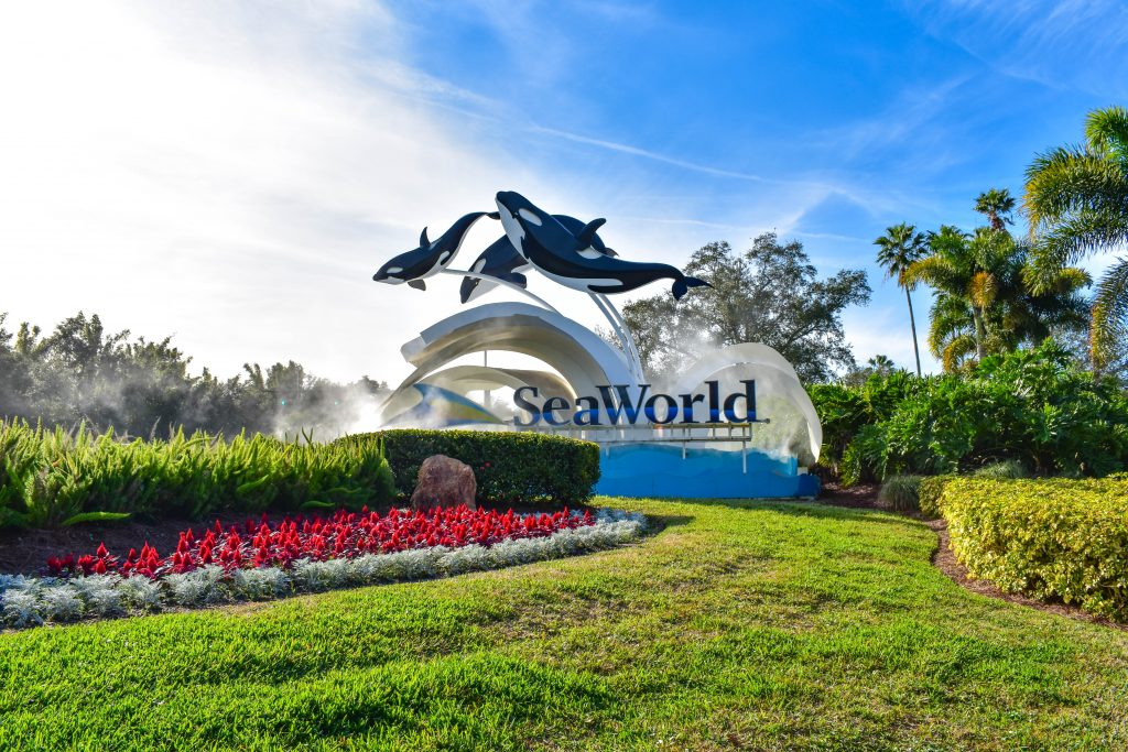 Sea world logo for amusement parks in Texas with three killer whales surrounded by green grass and flowers.