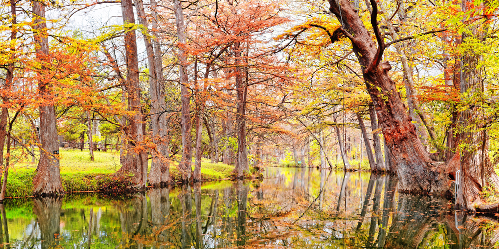 spring surrounded by orange and yellow fall colored trees one of the best day trips from Austin