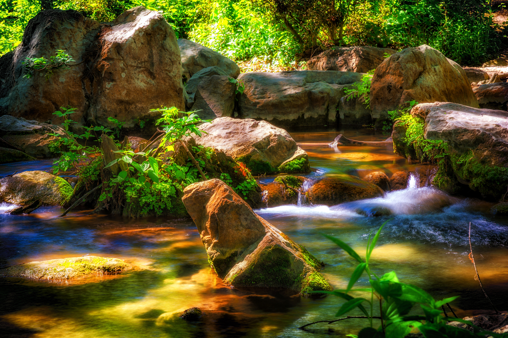 river flowing through rocks and plants with a lot of light shining down