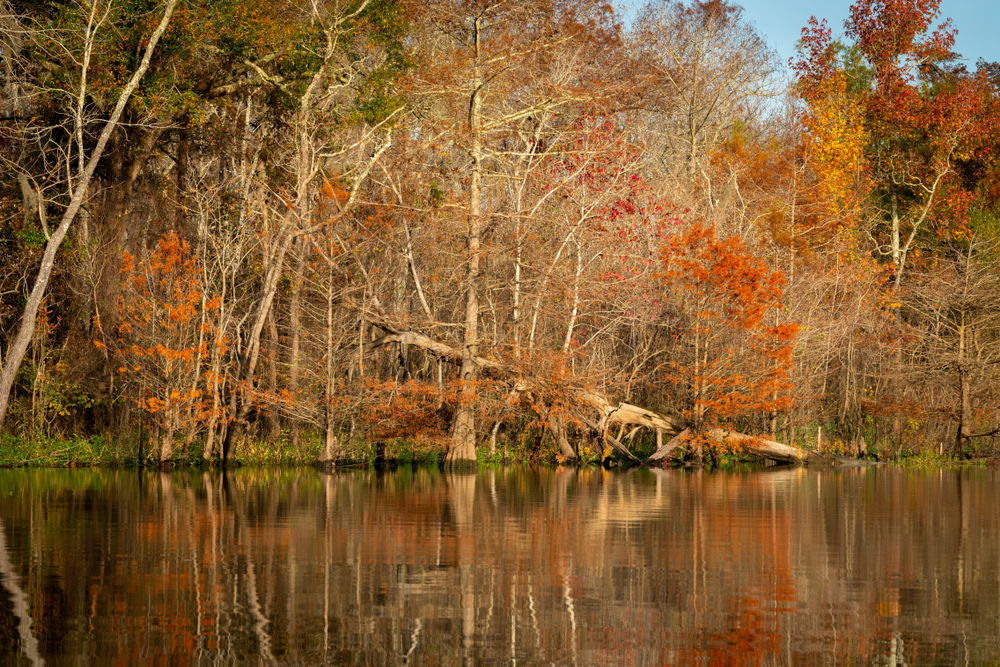 A lake surrounded by fall colors