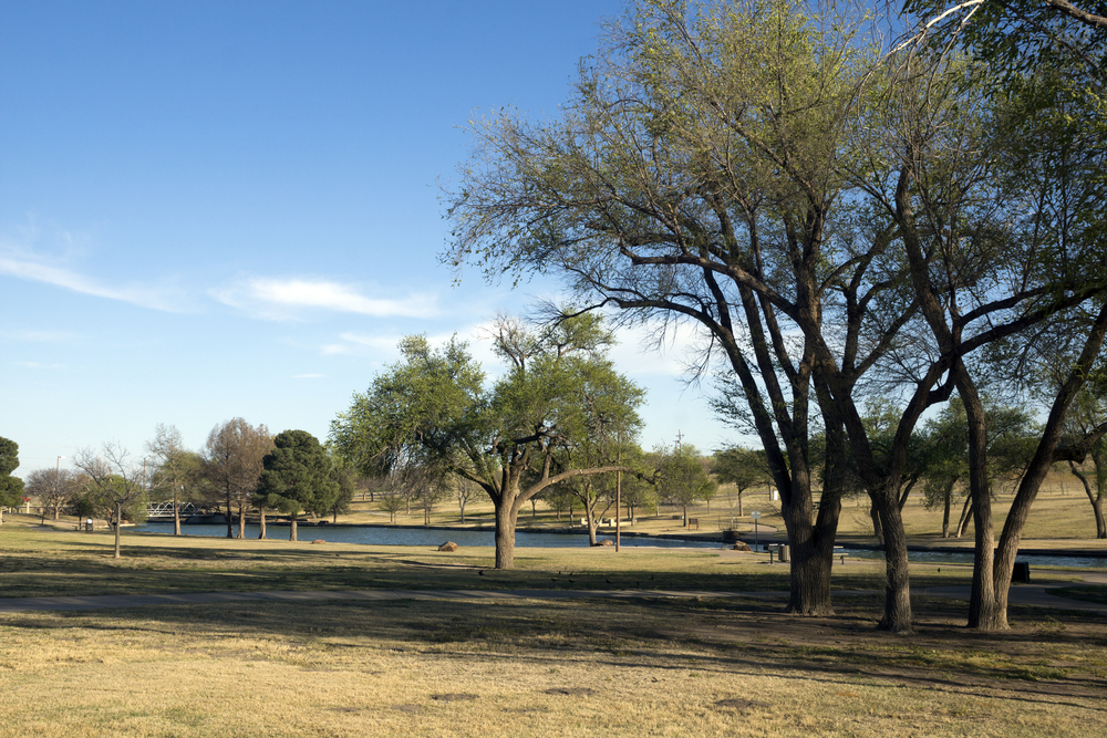 A lake in Lubbock Texas. There is a grassy lawn and trees.